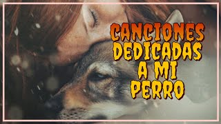 ♫Canciones dedicadas a mi perro - Songs dedicated to my dog