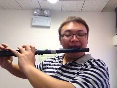 Nuvo Flute VS Brannen Silver Flute on Gordeli Concerto