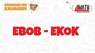 Ebob - Ekok