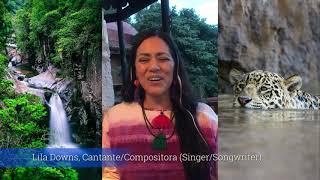 DEFENSA DEL RÍO LOS HORCONES (Puerto Vallarta, Jalisco, México) Por Lila Downs