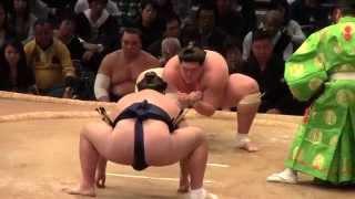 大相撲九州場所7日目、勢vs大関照の富士.