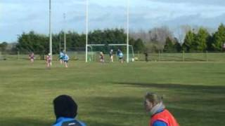 Camogie: Wexford vs Dublin, 2010 National League Division 1