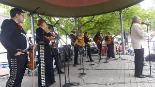 2017 Santa Fe Spanish Market | Introduction Mariachi - Sonidos del Monte