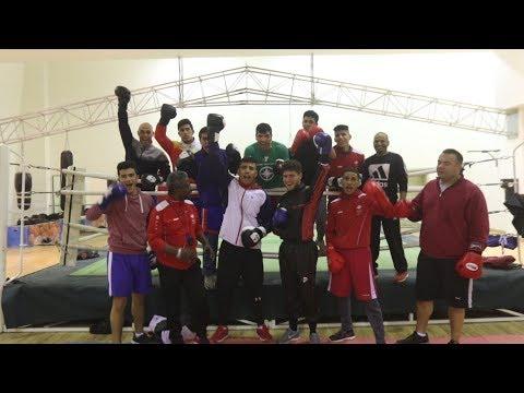 منتخب الملاكمة يتحضر للتصفيات الآسيوية لاولمبياد طوكيو 2020  - 11:54-2019 / 3 / 12