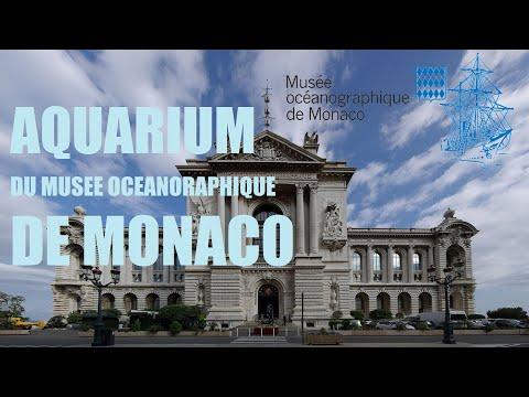 AQUARIUM & MUSEE OCEANOGRAPHIQUE DE MONACO - Aquarius