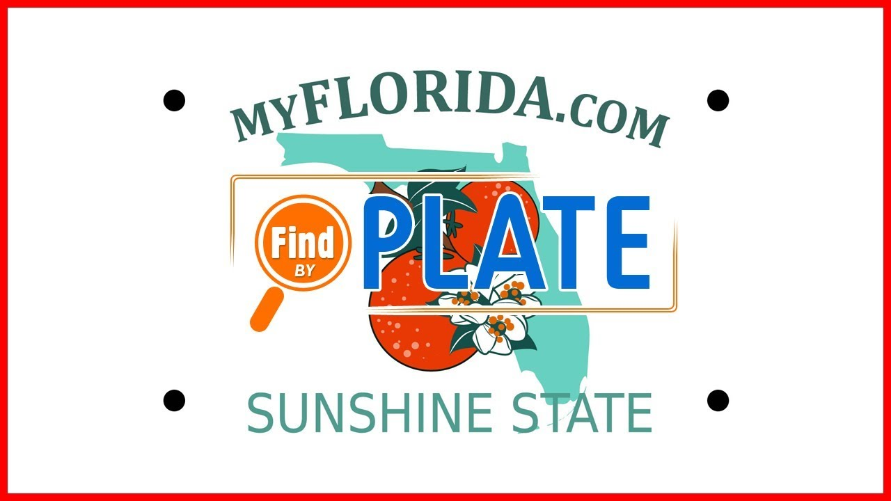 How To Lookup Florida License Plates And Report Bad Drivers Youtube