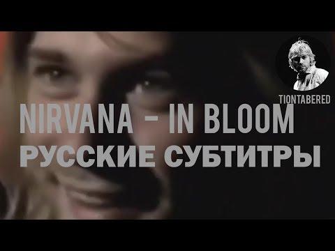 NIRVANA - IN BLOOM ПЕРЕВОД (Русские субтитры)