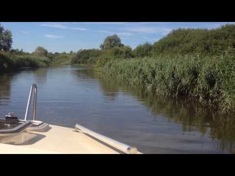 the Norfolk Broads     towards Rockland Broad and Rockland St Mary Staithe