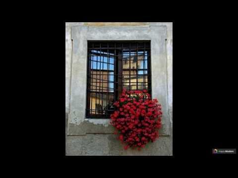 Кованые решетки на окна: 44 декора, которые привносят безопасность