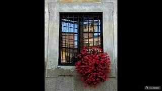 Кованые решетки на окна: 44 декора, которые привносят безопасность(http://happymodern.ru/kovanye-reshetki-na-okna-44-foto-bezopasnost-i-dekor-v-edinom-reshenii/ Кованые решетки на окна (65 фото): безопасность и декор ..., 2015-06-12T06:41:33.000Z)