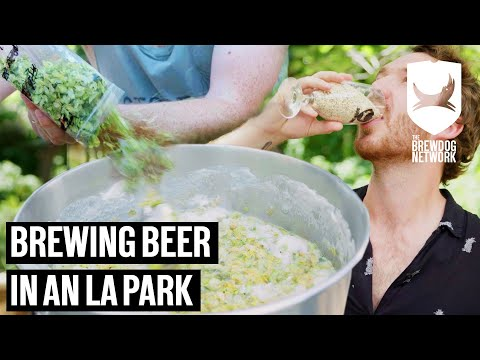 Brewing With The Latest Home Brew Kit | Craft Beer Adventure Club