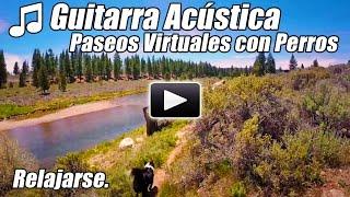 Guitarra Acustica Instrumental a Pie Tour Perro Paseos Rio Caminadora Video Paseo Virtual en Casa re