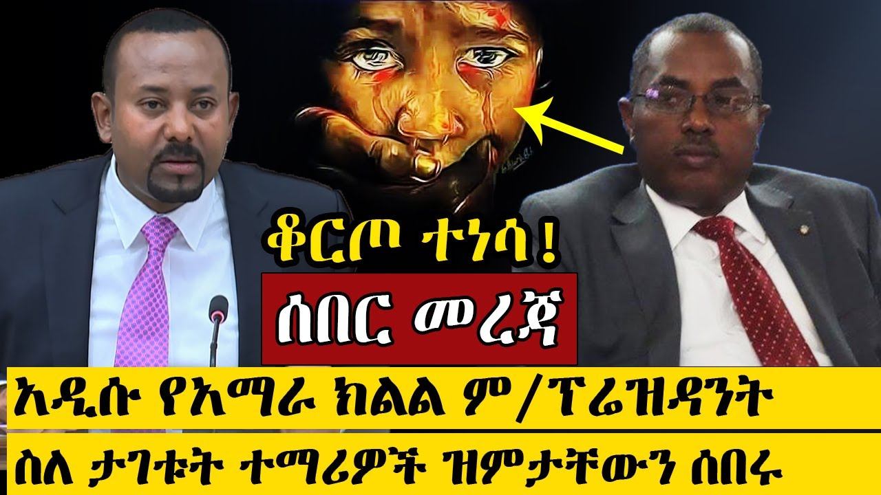 Interview with the new Amhara regional state vice president Dr. Fenta Mandefro