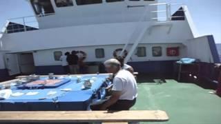 Nuevo Pleamar ( Arte de Pesca Palangre Americano )