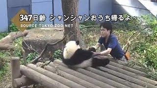 ☆ Cute Panda ☆ #21  モコモコのシャンシャン 抱っこしたい♡