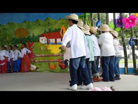 Baile Molienda De Caña