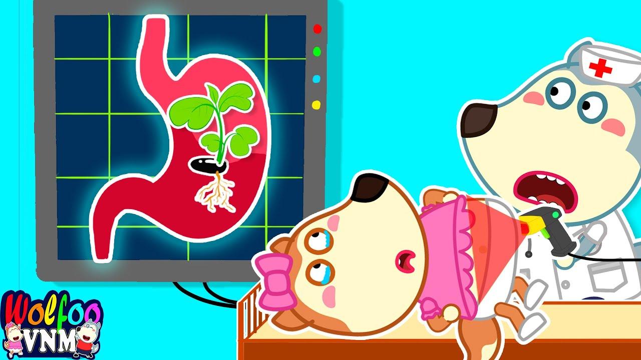 Download Lucy Nuốt Nhầm Hạt Cây 🍉 - Câu Chuyện Hài Hước Của Wolfoo | Phim Hoạt Hình Wolfoo Tiếng Việt