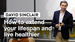 How to Extend Your Lifespan with David Sinclair | IVY Masterclass