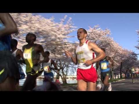 Credit Union Cherry Blossom Ten Mile Run Promo