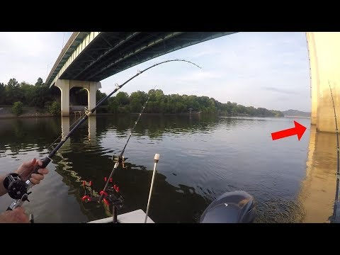 Fishing Bridge Pilings For Catfish (Ft. Outfittersoutdoors)