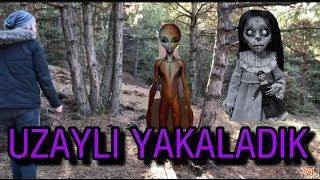 Gambar cover ORMANDA UZAYLI YAKALADIK