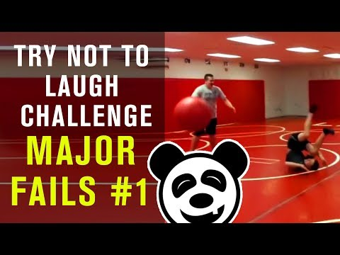 Funny Videos - Major Funny Fails - TRY NOT TO LAUGH CHALLENGE - You'll Cry With Laughter