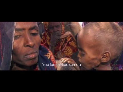 Shukri Jamal & Galana Garomsa - Lammiin koo beelahe **NEW**2015 (Oromo Music)