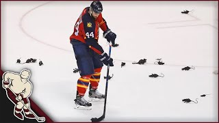 NHL: Stuff Thrown on the Ice