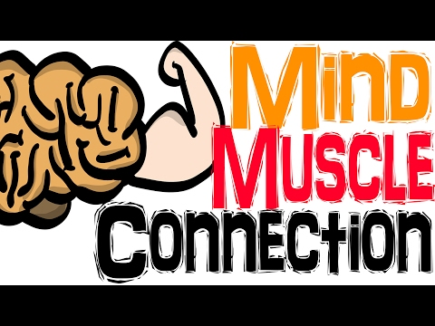 Mind Muscle Connection - THINKING Makes You STRONGER?