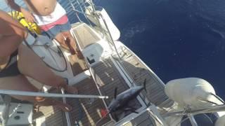 видео Сицилия  –  Book and Travel in Sardinia and Italy