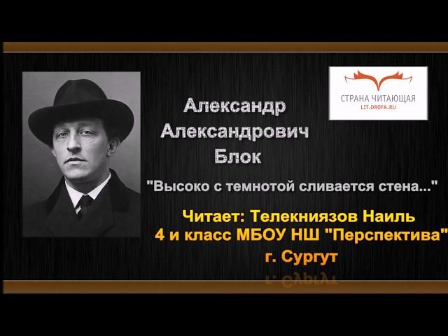 Изображение предпросмотра прочтения – НаильТелекниязов читает произведение «Высоко с темнотой сливается стена...» А.А.Блока