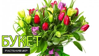 Букет цветов / Как сделать оригинальную композицию из 5-ти тюльпанов? / Композиции из цветов