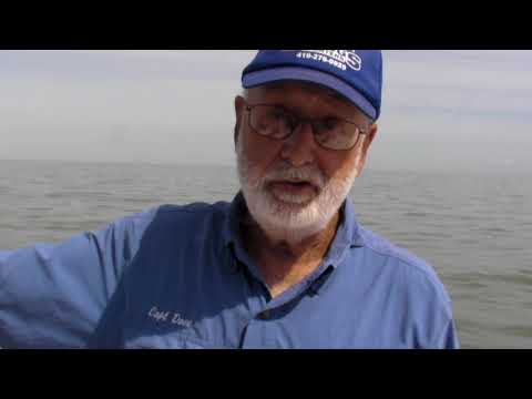 Charter Captain Talks About Lake Erie Algal Blooms