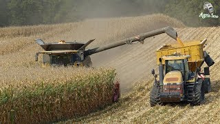 XXL Corn Harvest | CR 9.90 - MT 875C - Quadtrac 620 | Pure Sound