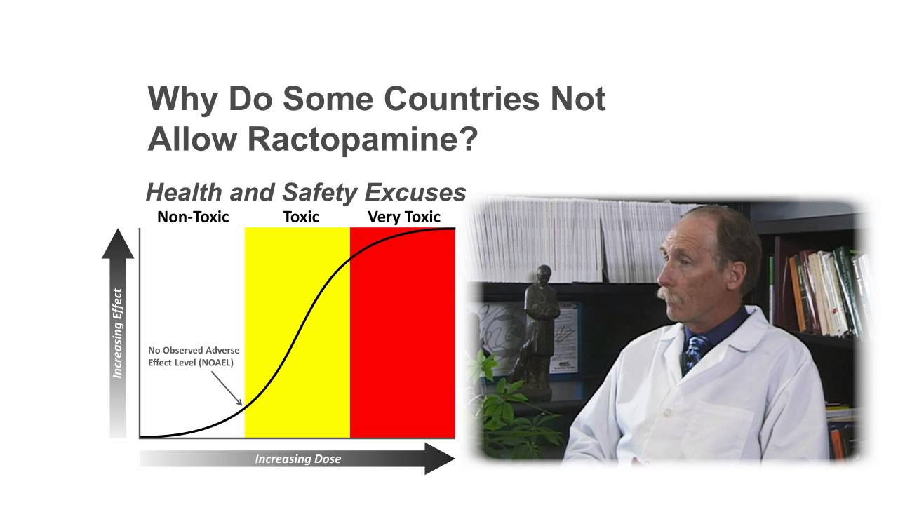 Is Ractopamine in Beef and Pork Safe? - YouTube