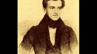 Johann Strauss Sr. - Radetzky March