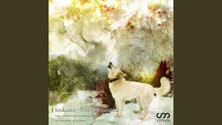 Setakamuy (y0c1e Remix)