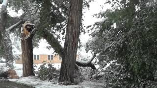 Buffalo Snow Storm Damage