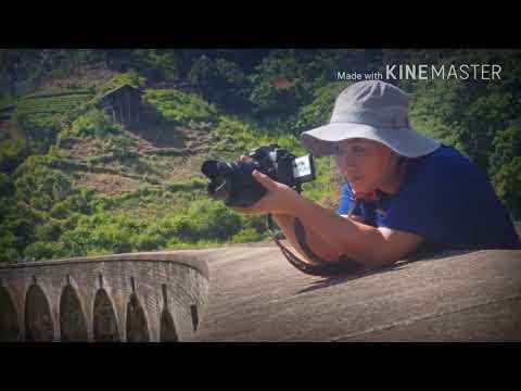 Demodara 하늘다리 Nine Arches Bridge   강하연 (kang Ha Yeon)