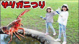 なかなか釣れない〜><今年のザリガニは頭がいい!?himawari-CH