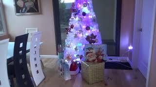 Рождество. Дождь. Почтальон забирает гринкарты для Евгения из Сан Диего