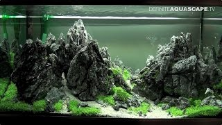 The Art Of The Planted Aquarium 2015 - Eheim (xl) Category, Part 8