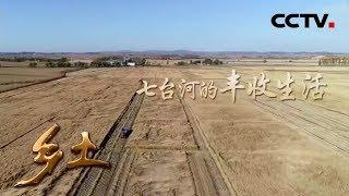 《乡土》 20190711 七台河的丰收生活  CCTV农业