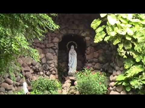 THF:சாந்தோம் தேவாலயம் (St. Thomas Cathedral Basilica)