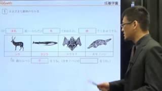 成基学園小学部HP http://www.seiki.jp/sgs/ S-webは小3~小6生向けの成...