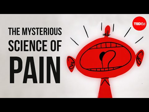 The mysterious science of pain - Joshua W Pate