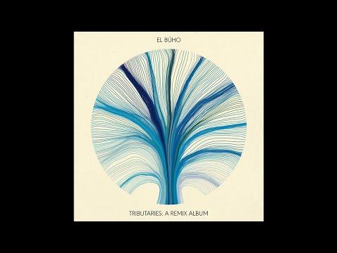 Go Dugong - Vidita (El Búho Remix)