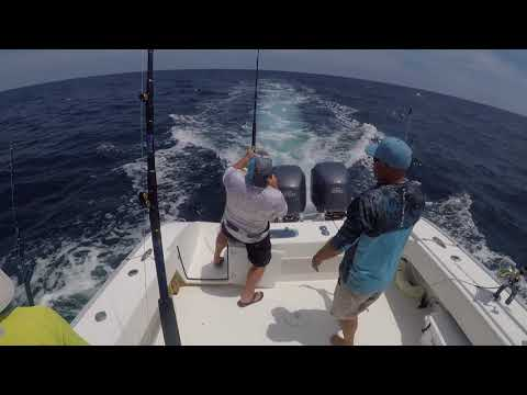 Mahi FIshing Offshore Virginia Beach