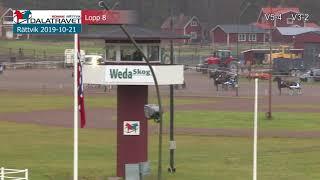 Vidéo de la course PMU PRIX LOPP 8