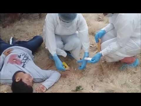 Medicina legal: levantamiento del cadáver